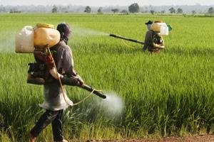 Pestizide in der Landwirtschaft (©123rf.com)