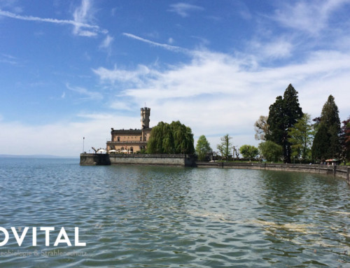 Geovital Sommerfest 2017