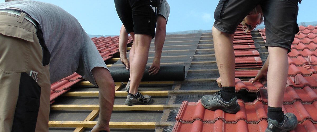 Elektrobiologie Dach Abschirmung Holzbauweise